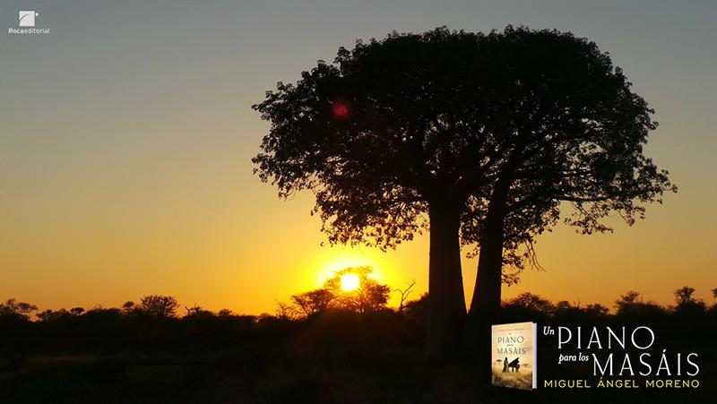 Un piano para los masis_baobab